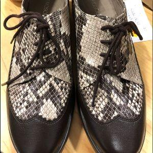 Aerosols accomplishment wingtip shoes new